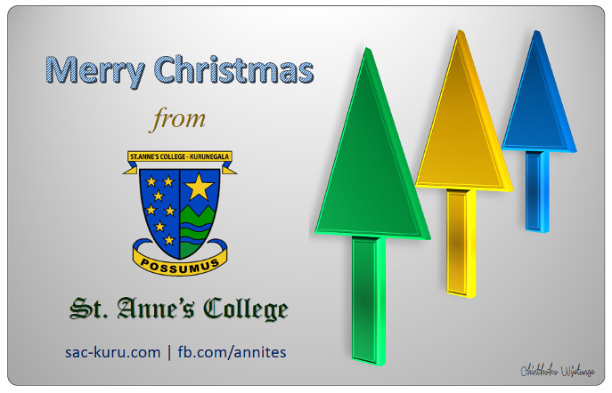Merry Christmas from Annites Family